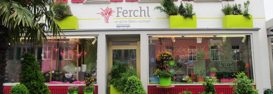 ferchl-blumen-slider-2